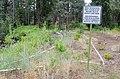 New vegetation planting (9685966547).jpg