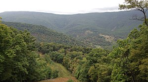 North Fork Mountain - View of the eastward-looking face of the middle section of North Fork Mountain. The valley in the middle distance is Smoke Hole Canyon.