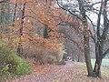 Nikolassee - Rehsprung - geo.hlipp.de - 30511.jpg