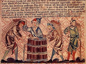 Noah's wine - A depiction from the Holkham Bible c. 1320 AD showing Noah and his sons making wine