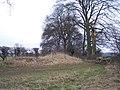 Norbury Camp, Defensive Bank - geograph.org.uk - 135571.jpg