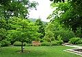 North Carolina Arboretum - bench.JPG