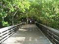 North PB FL MacArthur Beach SP long bdwk east03.jpg