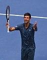Novak Djokovic (40021939483).jpg