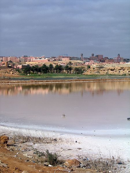File:Oasis and marshlands near the town of Tan-Tan, Morocco.jpg