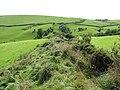 Offa's Dyke - Llanfair Hill - geograph.org.uk - 1479550.jpg