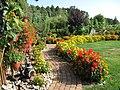Ogród pod lasem - panoramio.jpg