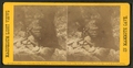 Ole Bull's Concert Room, from Robert N. Dennis collection of stereoscopic views.png