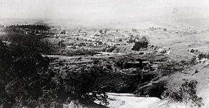 Oriental Claims - View of Omeo from the Oriental Claims c1890s showing the significant silting of Livingstone Creek; this view today is largely obscured by vegetation