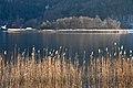 Pörtschach Halbinsel Landspitz Blick zur Kapuzinerinsel 31012013 6182.jpg