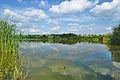Přírodní památka Nebeský rybník, okres Prostějov.jpg
