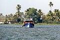 Pallikkayal Backwaters.jpg