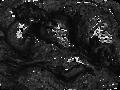 Pantagruel (Russian) p. 14.png