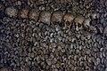 Paris Catacomb Skulls (35220985155).jpg