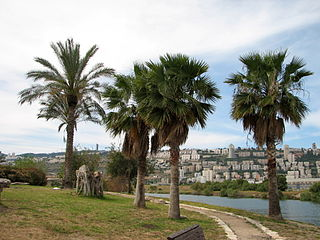 Kishon River river in northern Israel