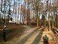 Park akademicki wczesną wiosną - panoramio.jpg