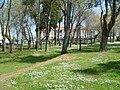 Parque Rosalia de Castro - Rosalia de Castro Park - Ares - A Coruña - Spain.JPG