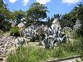 Parque del Este 2012 049.JPG