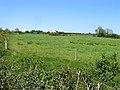Pasture east of the R741, Ballyknocken, Co. Wexford - geograph.org.uk - 1873738.jpg