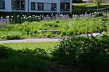 Piet oudolf wikipedia for Piet oudolf pflanzen