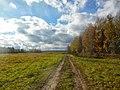 Permskiy r-n, Permskiy kray, Russia - panoramio (785).jpg