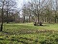 Picnic area, Haugh Wood - geograph.org.uk - 1205456.jpg