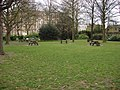 Picnic area, St John's Wood Churchyard - geograph.org.uk - 771856.jpg