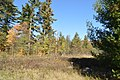 Piercefield, NY, USA - panoramio (45).jpg