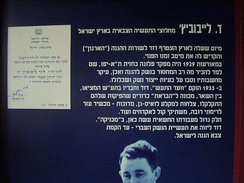 שלט על פועלו של דוד לייבוביץ'