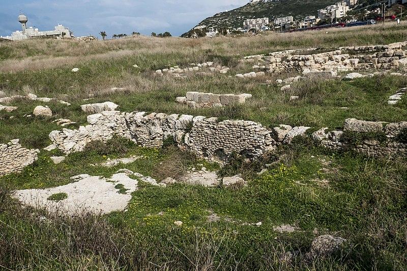 חיפה תל שקמונה