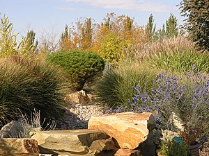 English: Layers of waterwise plants create a l...