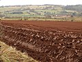 Ploughed field near East Combe - geograph.org.uk - 1187431.jpg