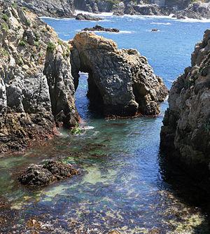 Salinian Block - Salinian Block granite at Point Lobos