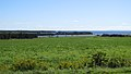 Point Prim Rd, Mount Buchanan (470954) (13488149234).jpg