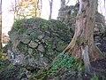 Polnoon Castle - fallen masonary.JPG