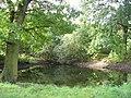 Pond in Woods - geograph.org.uk - 64143.jpg