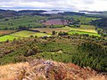 Potterland Hill, Southeast slope - geograph.org.uk - 1519503.jpg