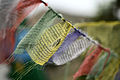 Prayer flags Hogle.jpg