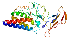 Protein IL2RA PDB 1z92.png