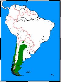 Pseudalopex griseus range map.png