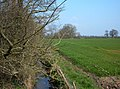 Puddington Brook - geograph.org.uk - 382832.jpg