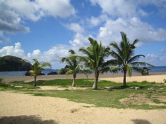 Catanduanes - Puraran Beach