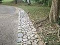 Putrajaya's Botanical Garden 37.jpg