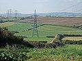 Pylons at Chickerell - geograph.org.uk - 554855.jpg
