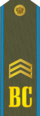 RFAF - Sergeant - Every day green.png