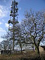 Radio Relay on the Mendips - geograph.org.uk - 92190.jpg