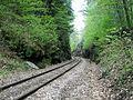 RailroadCutCavendishVermontPresumedToBePhineasGageAccidentSite.jpg