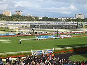 Randwick Racecourse hosts many of Sydney's horseracing events