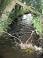 Red Lion Brook - geograph.org.uk - 498651.jpg