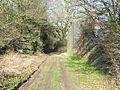 Remains of old railway bridge - geograph.org.uk - 690457.jpg